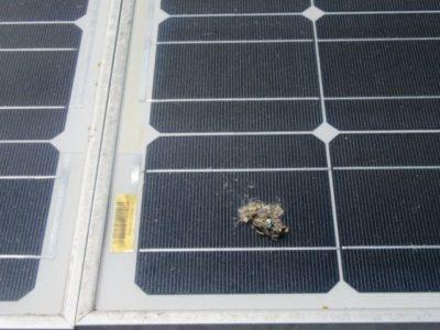 servis sončne elektrarne