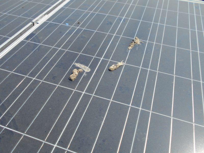 elektro-pregled-sončne-elektrarne