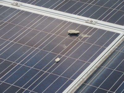 vzdrževanje sončna elektrarna