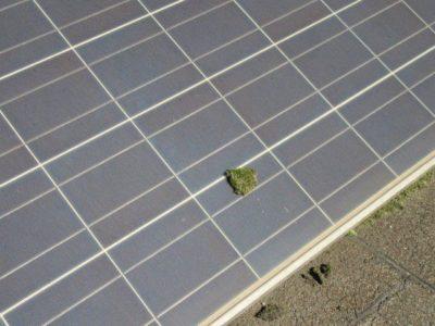 vzdrževanje sončne elektrarne
